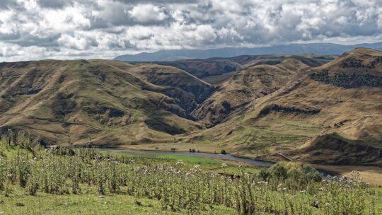 Voyage en Nouvelle-Zélande : deux îles à découvrir